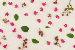 Pink crape myrtle petals, leaves and budding flowers. On muslin fabric royalty free stock photo