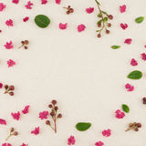 Pink crape myrtle petals, leaves and budding flowers. On muslin fabric with copy space royalty free stock photos