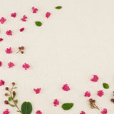 Pink crape myrtle petals, leaves and budding flowers. On muslin fabric with copy space stock photography