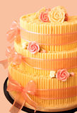 Pink and Cream Rose Party Cake Stock Image