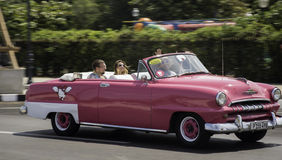 Pink Cuban Classic Havana Stock Images