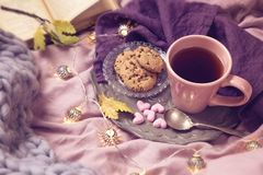 Pink cup of tea. Cookies, garland and wool blanket stock image