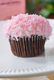 Pink cupcake. Coconut covered pink cupcake on a white platter Royalty Free Stock Photography