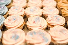 Pink Cupcake Close Up Royalty Free Stock Photos