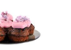 Pink cupcakes. Cupcakes with pink icing and lilac flowers Stock Image