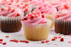 Pink Cupcakes Close Up Royalty Free Stock Photo