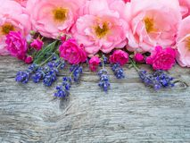 Pink curly open roses and provence lavender bouquet on the weath Stock Photos