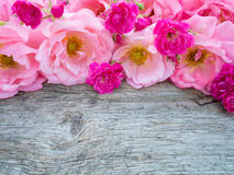 Pink curly roses and small vibrant pink roses on the wooden boar Stock Image