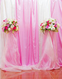 Pink Curtain and carpet Stock Image