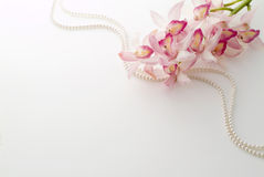 Pink cymbidium and pearl Royalty Free Stock Photo