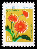 Pink dahlias, Cultivated flowers serie, circa 1977. MOSCOW, RUSSIA - FEBRUARY 21, 2019: A stamp printed in Vietnam shows Pink dahlias, Cultivated flowers serie stock image