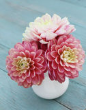 Pink dahlias in white jug on old wooden background. Pink dahlias in white jug on old blue wooden background Stock Images
