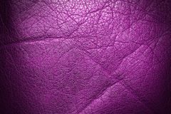 Pink dark shining leather Royalty Free Stock Images
