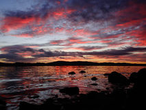 Pink Dawn Stock Photography