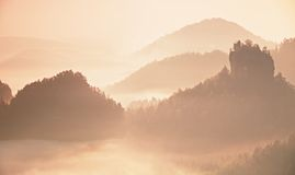 Pink daybreak in landscape.  Misty morning in  beautiful hills. Peaks of hills in  fog Royalty Free Stock Photos
