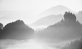 Pink daybreak in landscape.  Misty morning in  beautiful hills. Peaks of hills in  fog Royalty Free Stock Photography