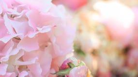 Pink decoration artificial flower stock photos