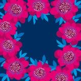 Pink decorative camellia flowers frame. Stock Image