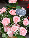 Pink delicated roses in a basket Stock Image