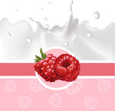 Pink design with raspberry and milk splash - vector Royalty Free Stock Photo