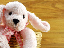 Pink dog doll in the basket on wooden background Stock Image