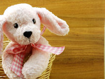 Pink dog doll in the basket on wooden background Royalty Free Stock Photo