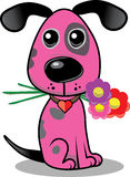 Pink dog Stock Images