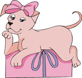 Pink doggy gift Royalty Free Stock Photos