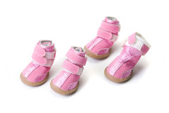 Pink Dogs boots Stock Photography
