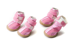 Pink Dogs boots Royalty Free Stock Images