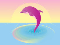 Pink dolphin Royalty Free Stock Image
