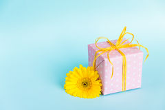 Pink dotted gift box and a yellow gerbera flower over a blue background. Royalty Free Stock Images