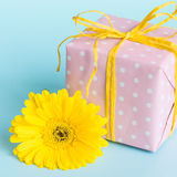 Pink dotted gift box and a yellow gerbera flower over a blue background. Stock Photo