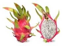 Pink dragon fruit. Fruitage of cactus is tropical fruit. stock image