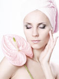 Pink dream Stock Photography