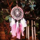 Pink dreamcatcher on the tree. Pink dreamcatcher catching wind energy to charge. Talisman to bring good dreams. Handmade by me Royalty Free Stock Images