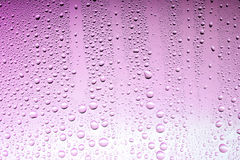 Pink drops Royalty Free Stock Image
