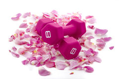 Pink Dumbbells on a Bed of Rose Petals Royalty Free Stock Image