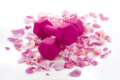 Pink Dumbbells on a Bed of Rose Petals Stock Images