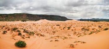 Pink Dunes Stock Photo