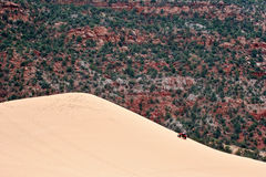 Pink Dunes Royalty Free Stock Photos