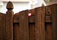 Pink-dyed Easter egg with name of `Natalie` is hidden on a ledge on wooden fence stock photos