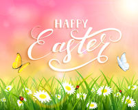 Pink Easter background with grass and flowers. Pink nature Easter background with a butterfly flying above the grass and flowers, lettering Happy Easter and sun Stock Photo