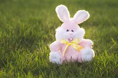 Pink Easter Bunny Royalty Free Stock Photo