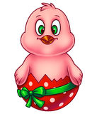 Pink Easter Chicken in Egg Shell Royalty Free Stock Images