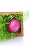 Pink easter egg in a basket Stock Photography