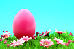 Pink easter egg on meadow with flowers & cyan background Stock Image