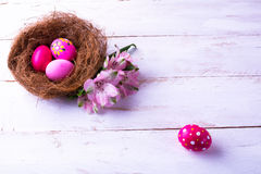 Pink Easter eggs in a nest Royalty Free Stock Photo