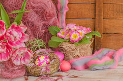 Pink easter eggs in nest and tulips. Background with easter eggs. Pink Easter eggs and nest on wodden background. Easter photo concept Stock Image