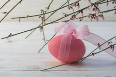Pink easter eggs with a ribon under blooming genista or broom on Stock Images